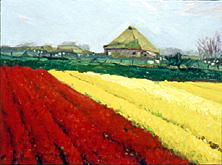 Texel Bulb Fields w/ Farmhouse